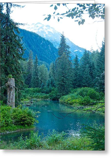 Greeting Card featuring the photograph Fish Creek In Tongass National Forest By Hyder-ak  by Ruth Hager