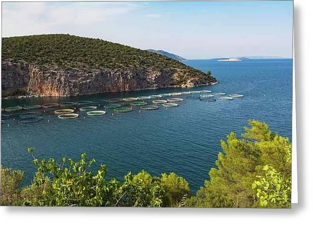 Fish Farming, Greece Greeting Card by Ken Welsh