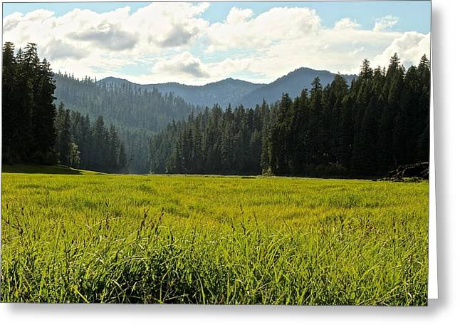 Fish Lake - Open Field Greeting Card