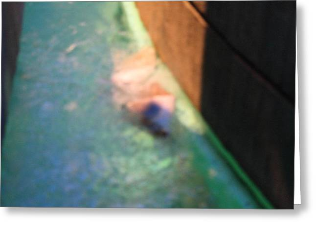 Fish - National Aquarium In Baltimore Md - 12126 Greeting Card by DC Photographer