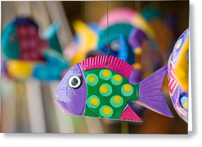 Fish Of Color Greeting Card
