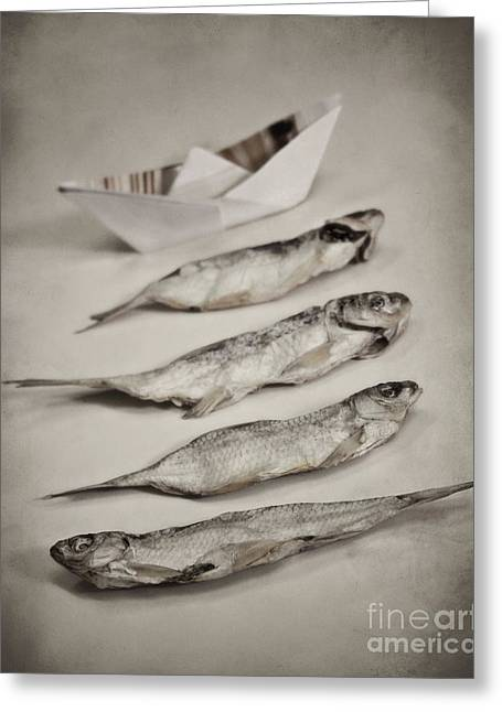 Fish Out Of Water Greeting Card by Diana Kraleva