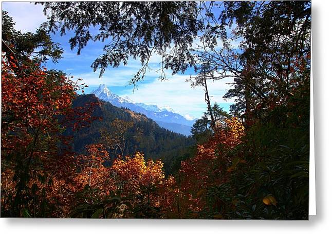 Fish Tail Mountain Greeting Card
