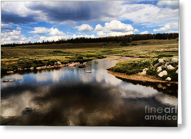 Fishermans Creek Greeting Card by Edward R Wisell