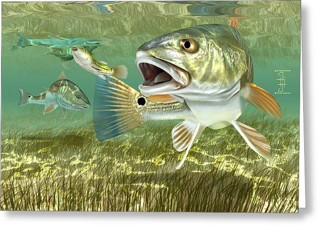 Fisherman's Post Redfish Greeting Card