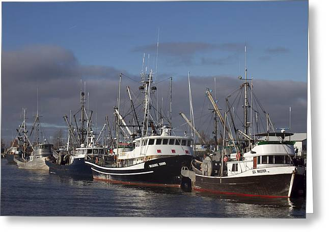 Fishing Boats Greeting Card by Elvira Butler