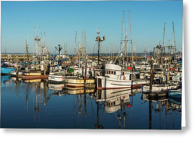 Fishing Boats In A Harbour  Westport Greeting Card