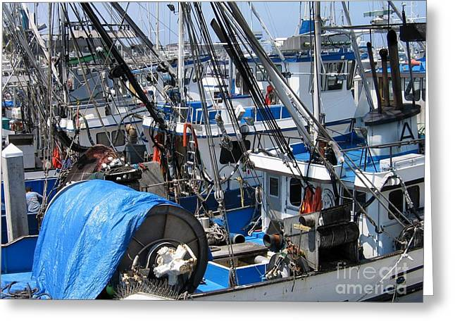 Fishing Boats In Monterey Harbor Greeting Card