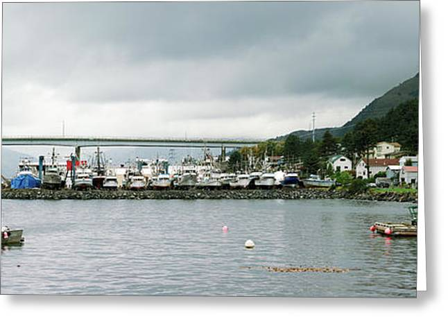 Fishing Fleets At The Coast, Kodiak Greeting Card by Panoramic Images