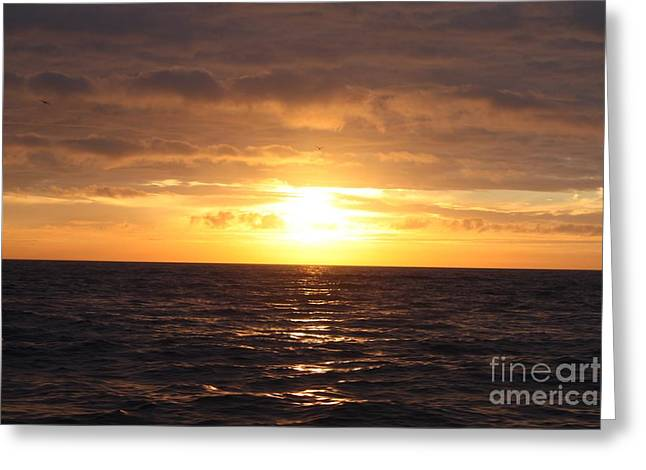 Fishing Into The Sunrise Greeting Card