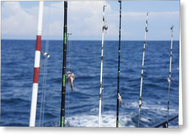 Fishing Trip Greeting Card by Laurie Perry