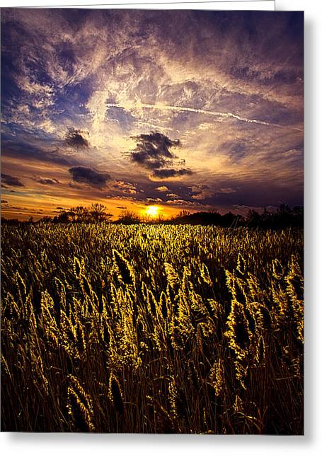 Five Degrees Greeting Card by Phil Koch