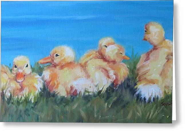 Five Ducklings Greeting Card