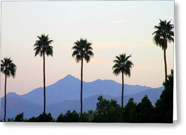 Five Palms Greeting Card