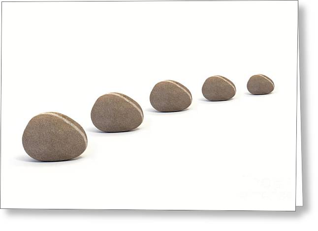 Five Queuing Pebbles Against White Background Greeting Card by Natalie Kinnear