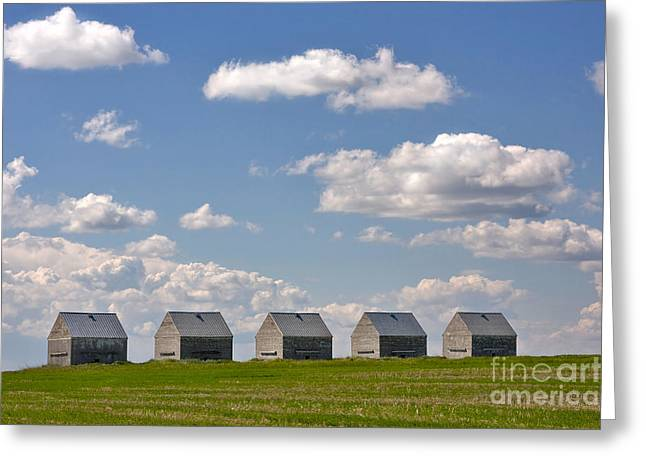 Five Sheds On The Alberta Prairie Greeting Card by Louise Heusinkveld