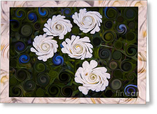 Five White Flowers In An Abstract Garden Greeting Card by Omaste Witkowski