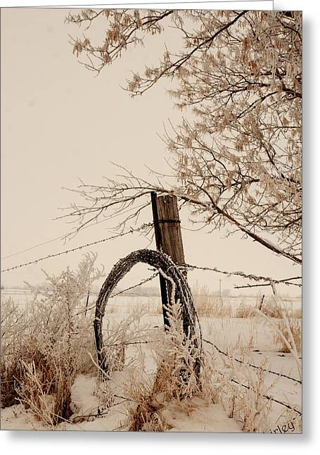 Greeting Card featuring the photograph Fixing Fence by Shirley Heier