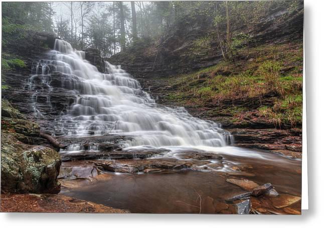 Fl Ricketts Waterfall Greeting Card by Lori Deiter