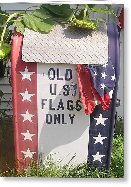 Flags Only Greeting Card by Roger Swezey