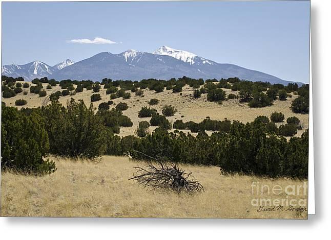 Flagstaff Landscape IIi Greeting Card by Dave Gordon