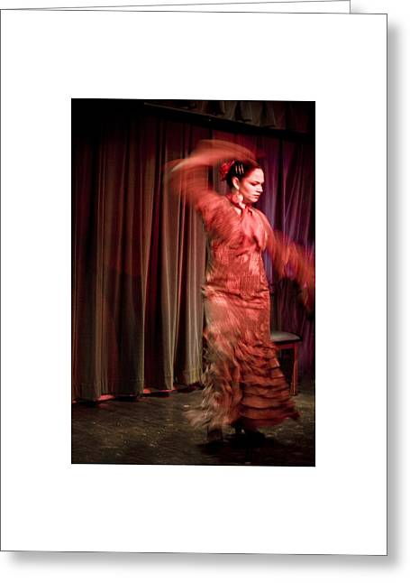 Flamenco Series 13 Greeting Card