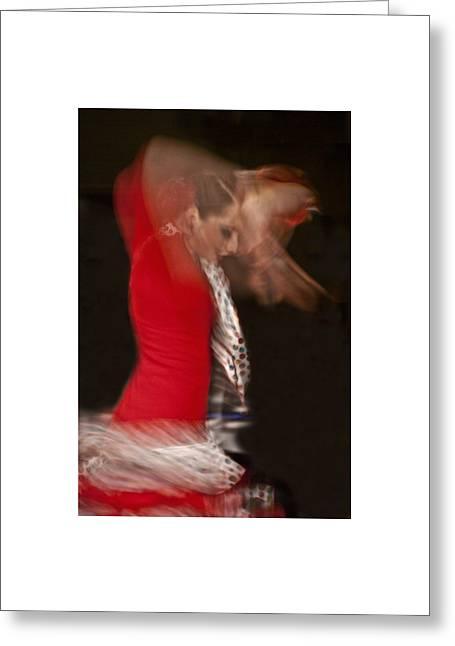 Flamenco Series 3 Greeting Card