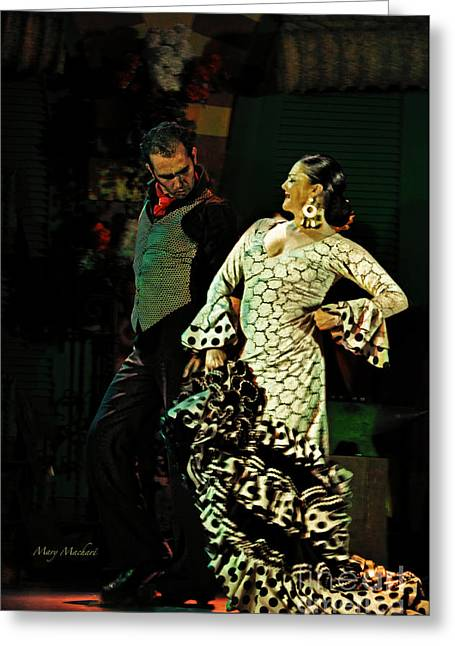 Flamenco Series No 11 Greeting Card by Mary Machare