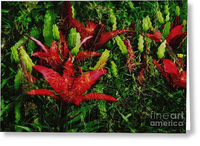 Greeting Card featuring the photograph Flames by Kathie Chicoine