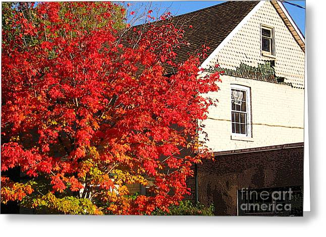 Greeting Card featuring the photograph Flaming Fall Colours On Farm House by Nina Silver