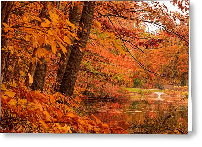 Flaming Leaves Greeting Card by Lourry Legarde