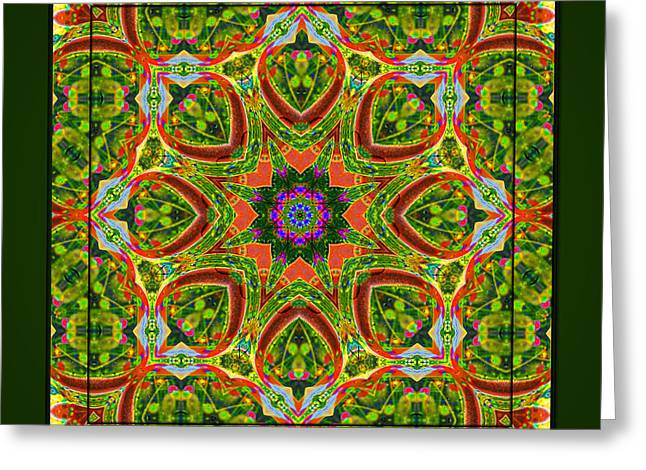 Greeting Card featuring the photograph Flaming Neck Kaleidoscope by Barbara MacPhail