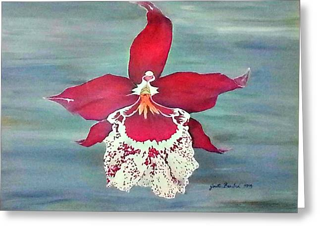 Flaming Orchid Greeting Card