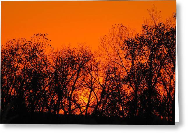 Flaming Sunset II Greeting Card