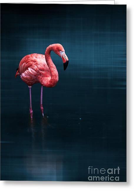 Flamingo - Blue Greeting Card by Hannes Cmarits
