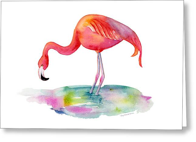Flamingo Dip Greeting Card by Amy Kirkpatrick
