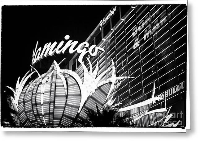 Flamingo Night View Greeting Card by John Rizzuto