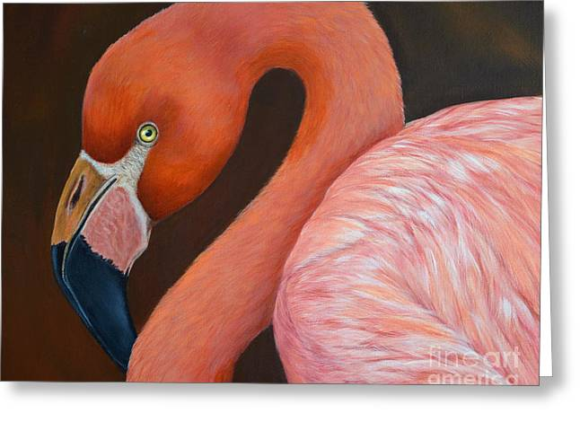 Flamingo Pretty In Pink Greeting Card