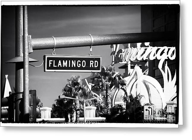 Flamingo Road Greeting Card by John Rizzuto