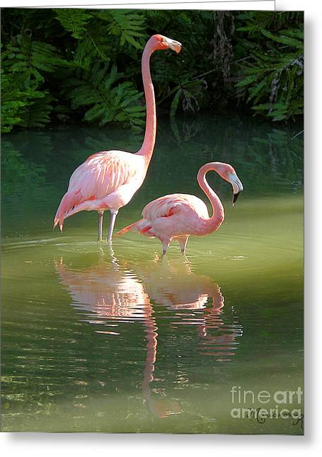 Flamingo Stroll Greeting Card by Mariarosa Rockefeller