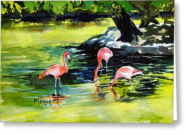 Flamingos At The St Louis Zoo Greeting Card by Spencer Meagher