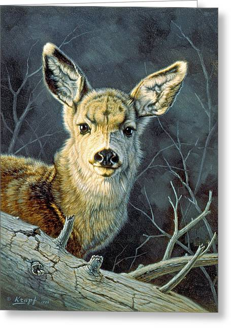 Fleeting Visit- Fawn Greeting Card by Paul Krapf