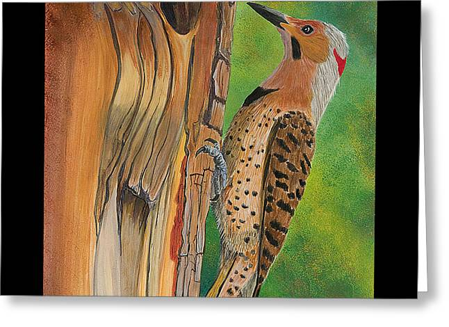 Flicker Greeting Card by Amy Reisland-Speer