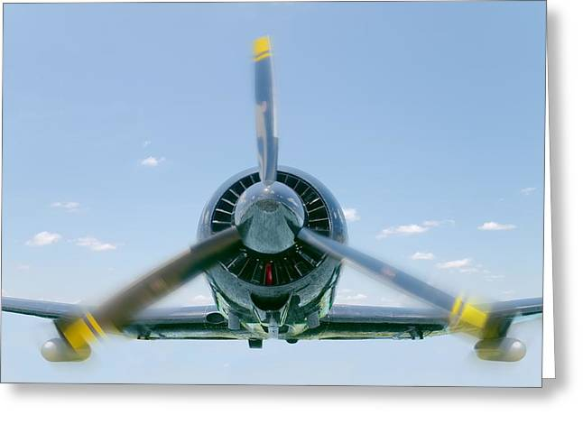 Flight In Color Greeting Card