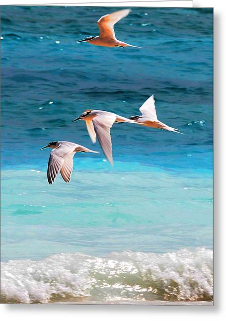 Flight In The Blue Greeting Card by Jenny Rainbow