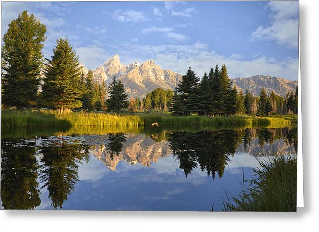 Flight In The Tetons Greeting Card