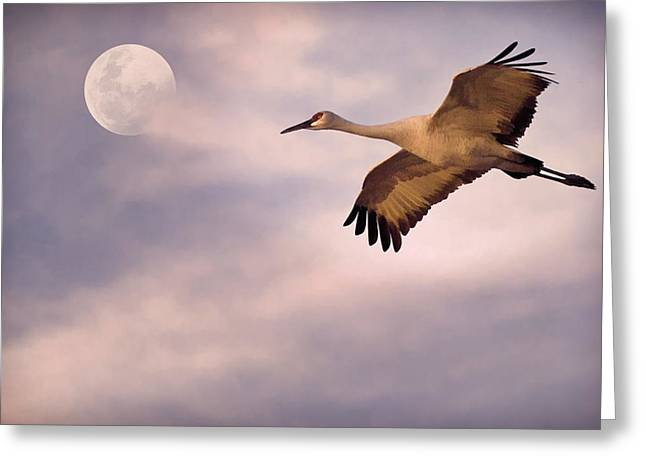Flight Of The Crane Greeting Card by Priscilla Burgers