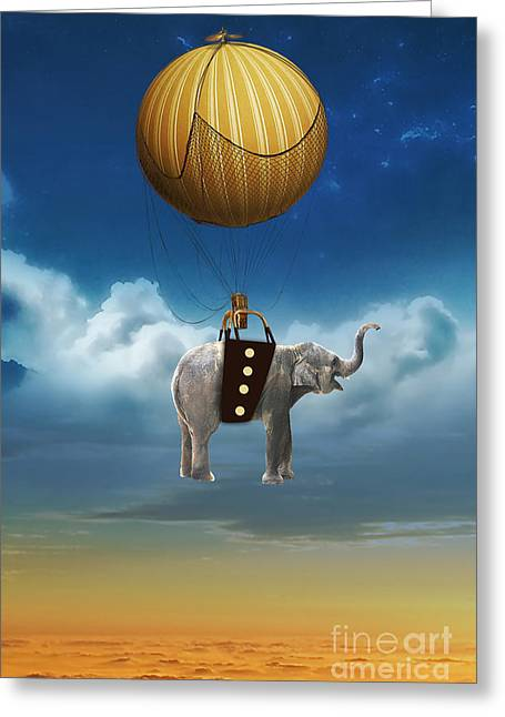 Flight Of The Elephant Greeting Card by Marvin Blaine