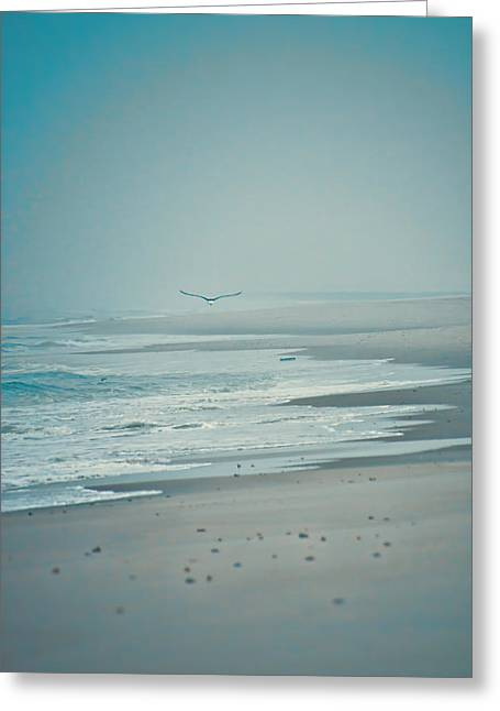 Flight Of Tranquility And Peace Greeting Card