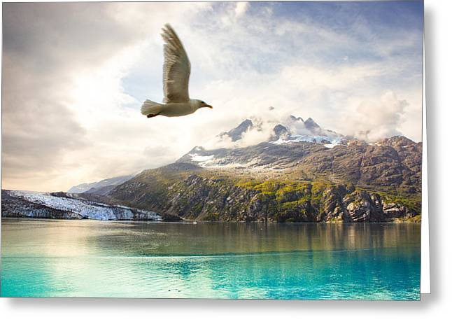 Greeting Card featuring the photograph Flight Over Glacier Bay by Janis Knight